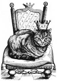 Rey de los Gatos
