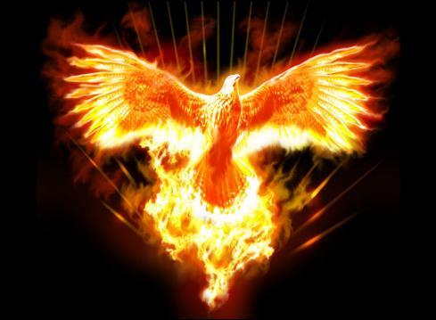 El origen del ave Fénix