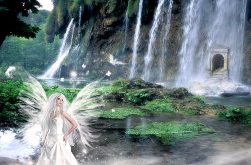 Damas Blancas, hadas de los bosques nevados
