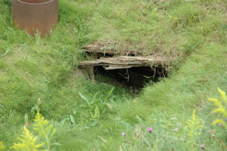 El misterio del pozo del tesoro en la isla Oak