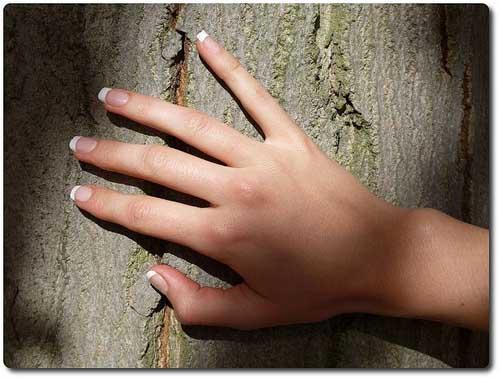 Tocar madera