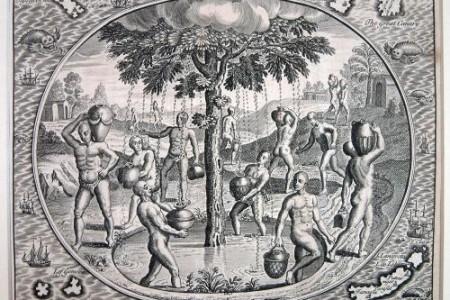 Garoé, el árbol sagrado de los bimbaches